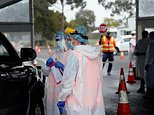 Australia sees record number of new coronavirus cases with 501
