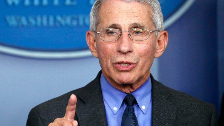 Anthony Fauci said New York is an example of how to 'correctly' confront soaring coronavirus cases
