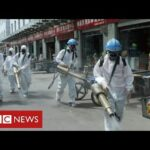 Fears of second wave in China – as questions continue about origins of coronavirus – BBC News
