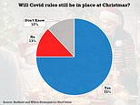 Britons give up on Christmas: Just 13% believe coronavirus rules will be eased by the festive season