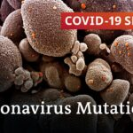 How dangerous can mutated coronavirus strains be? | COVID-19 Special