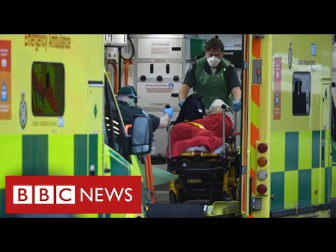 80,000 Covid deaths in UK as scientists call for stricter lockdown – BBC News