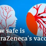 Does the AstraZeneca COVID vaccine cause blood clots? | DW News