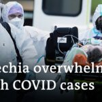How did the Czech Republic get to the world's worst COVID infection rate? | DW News
