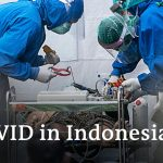 Delta variant leads to record high COVID cases and deaths in Indonesia | DW News