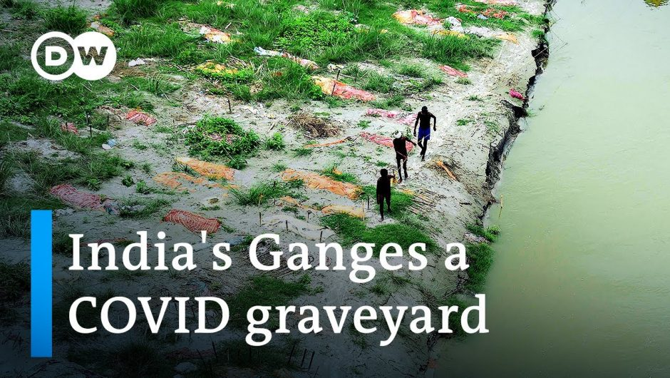 Flooding of India's Ganges reveals hundreds of COVID graves   DW News