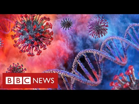 """Coronavirus will remain a threat """"for a very long time"""" warn leading scientists – BBC News"""