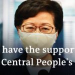 Hong Kong leader Carrie Lam delays elections citing coronavirus | DW News
