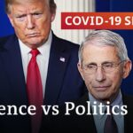 How science and politics collide in the battle against the coronavirus   COVID-19 Special
