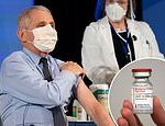 Dr Fauci was 'knocked out for 24 hours' with side effects after second COVID-19 vaccine dose