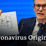WHO presents first Wuhan coronavirus investigation results | DW News