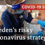 The Swedish model for fighting COVID-19 | COVID-19 Special
