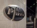 Pfizer launches first clinical trial of PILL to treat COVID-19 orally