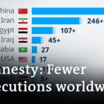 Global death penalties at lowest in a decade | DW News