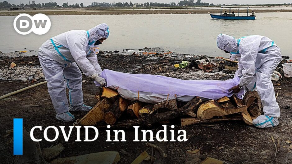India: Bodies of suspected COVID-19 victims wash up on Ganges riverbanks   DW News
