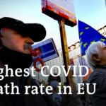 Czech Republic reopens amid anger over high COVID death rate | DW News