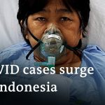 Red Cross warns Indonesia 'on the edge of a COVID-19 catastrophe'   DW News